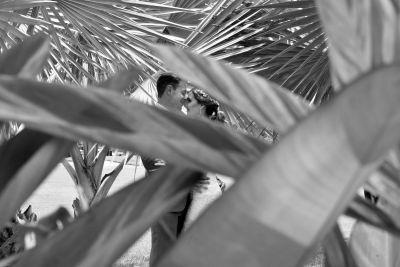 Fotografías de Erica + Aldo Jardin Ixaya de Alan Cervantes