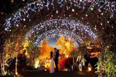 Fotografía de Weddings de Penzi bodas - 20507