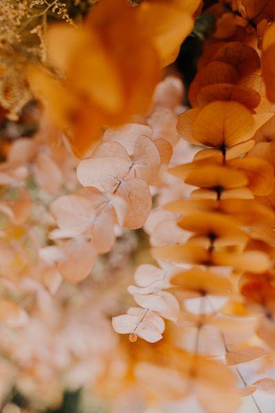 Fotografías de Detalles de Taller Olivo